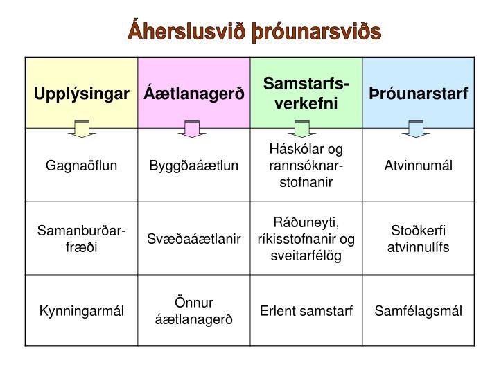 Áherslusvið þróunarsviðs