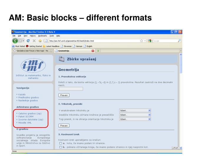 AM: Basic blocks – different formats
