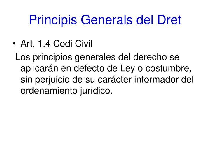 Principis Generals del Dret