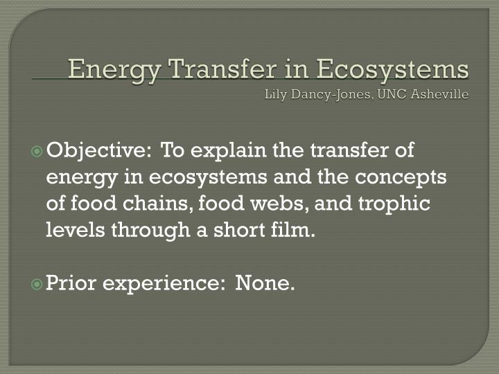 Energy transfer in ecosystems lily dancy jones unc asheville