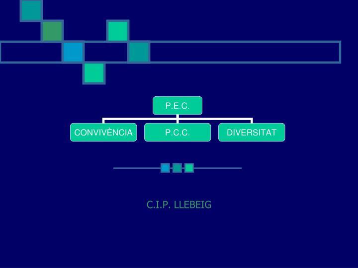 C.I.P. LLEBEIG
