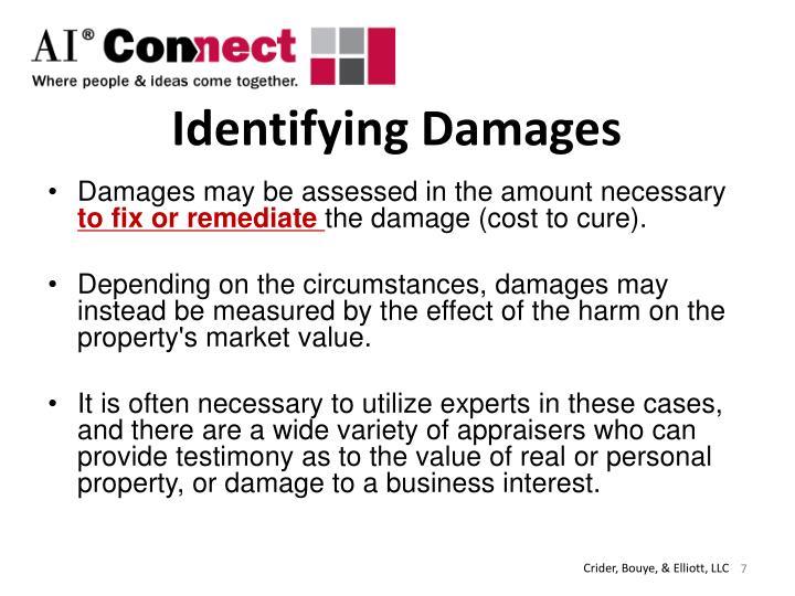 Identifying Damages