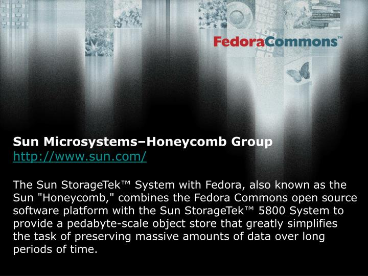 Sun Microsystems–Honeycomb Group