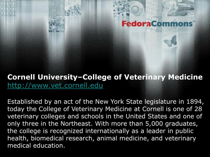 Cornell University–College of Veterinary Medicine