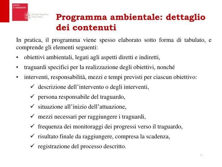 Programma ambientale: dettaglio dei contenuti