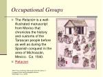 occupational groups