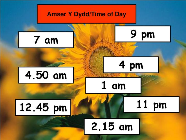 Amser Y Dydd/Time of Day