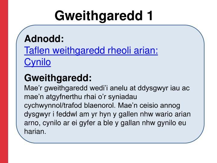 Gweithgaredd 1