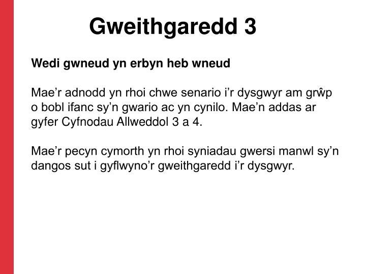 Gweithgaredd 3