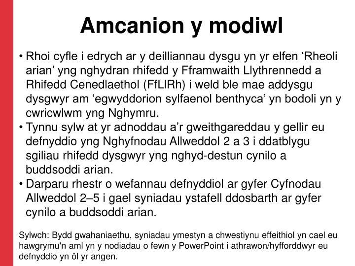 Amcanion y modiwl
