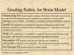 grading rubric for brain model