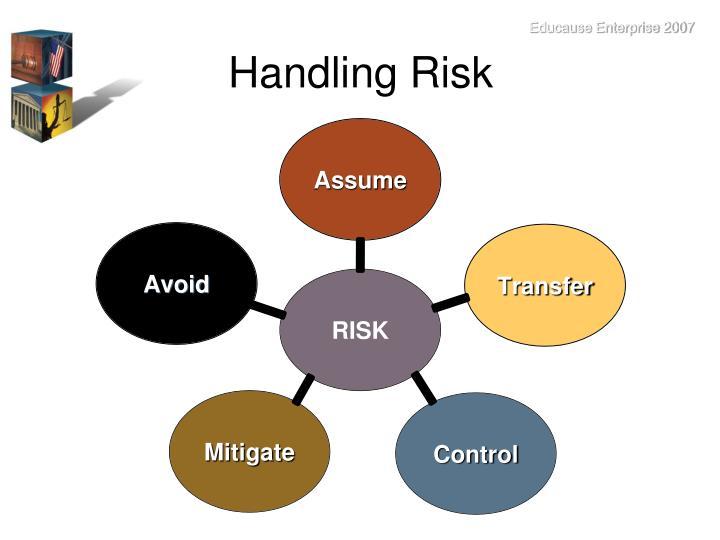 Handling Risk
