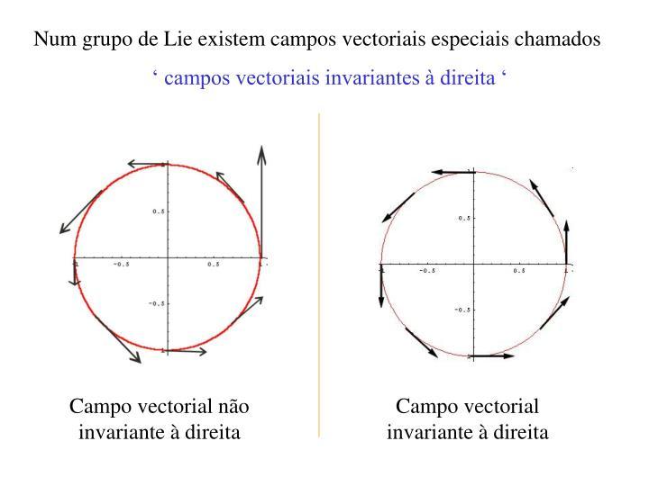 Num grupo de Lie existem campos vectoriais especiais chamados