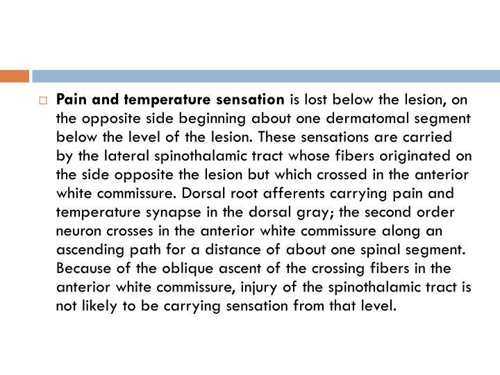 Pain and temperature sensation