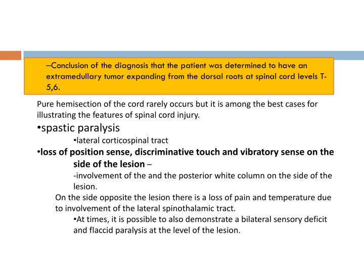 Conclusion of the diagnosis that the patient was determined to have an extramedullary tumor expanding from the dorsal roots at spinal cord levels T-5,6.