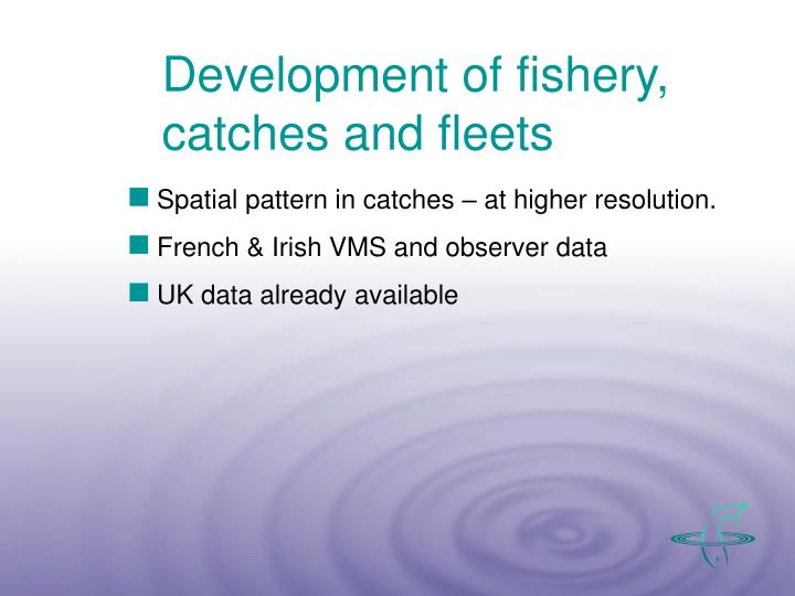 Development of fishery, catches and fleets