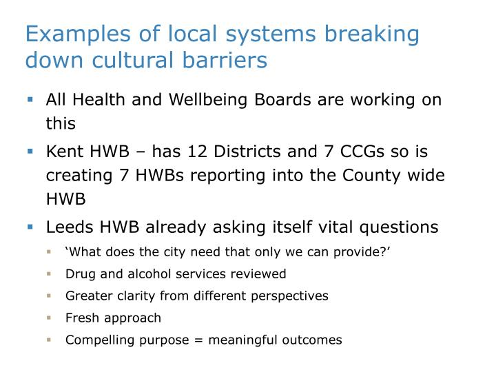 Examples of local systems breaking down cultural barriers
