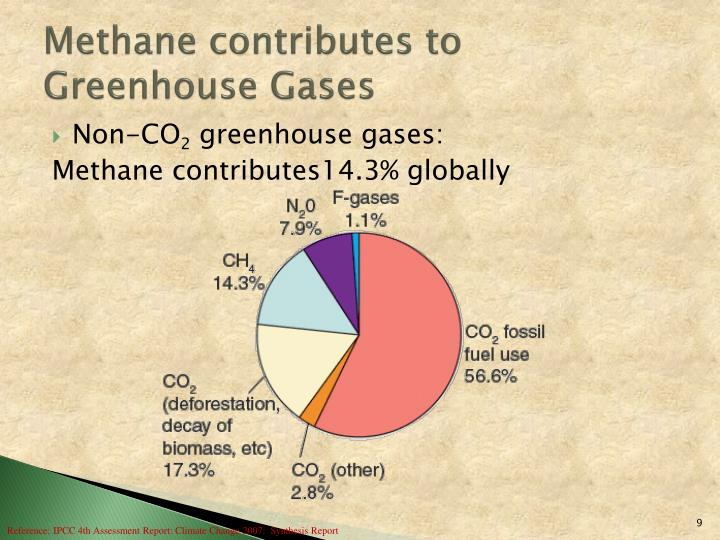 Methane contributes to Greenhouse Gases