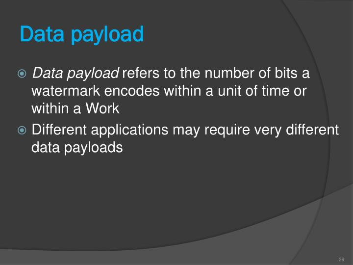 Data payload