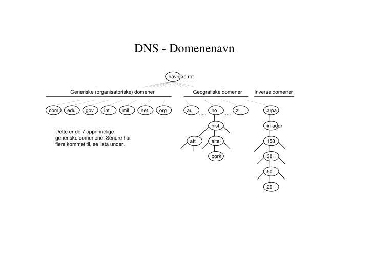 DNS - Domenenavn