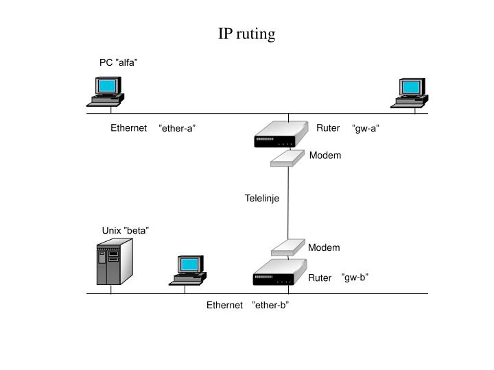 IP ruting