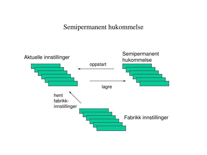 Semipermanent hukommelse