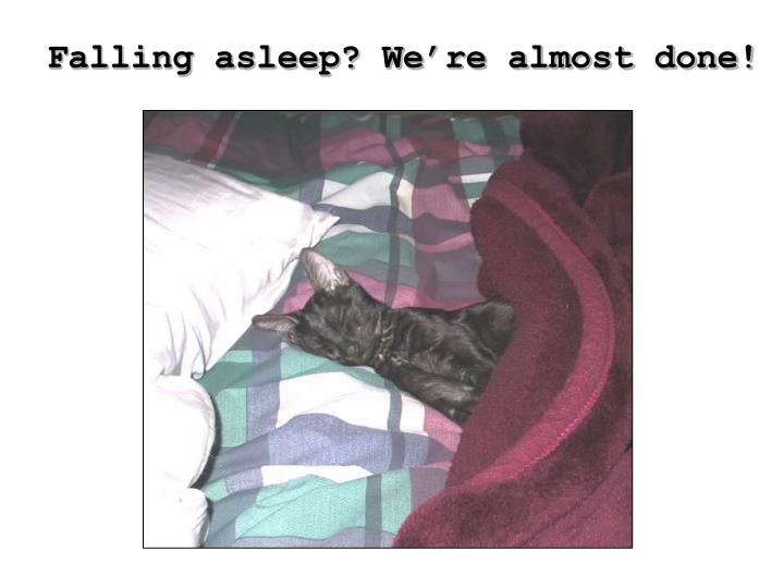 Falling asleep? We're almost done!
