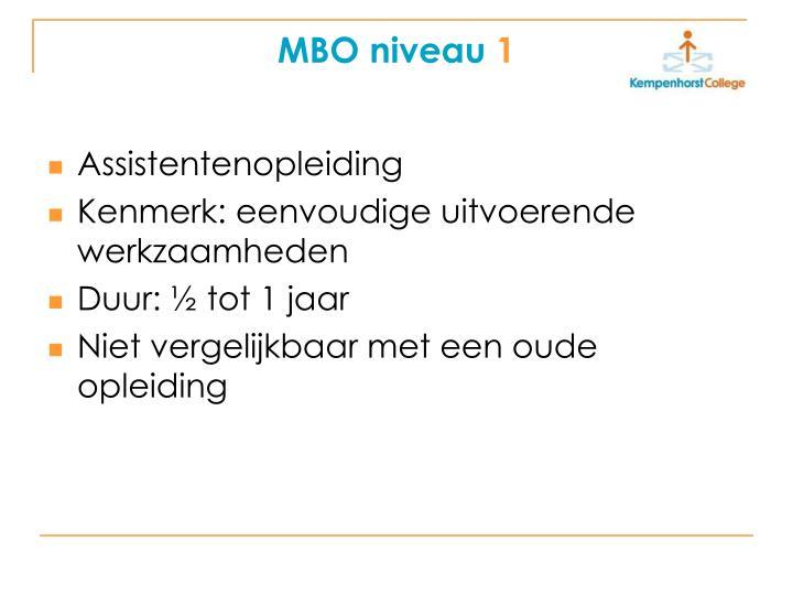 MBO niveau