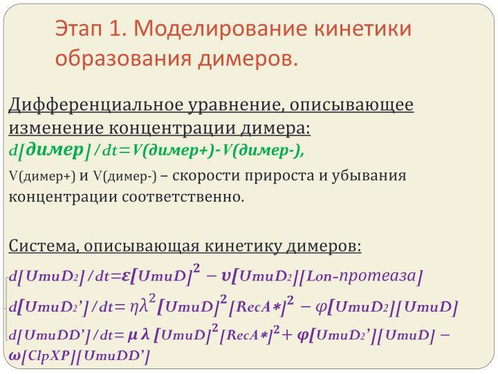 Этап 1. Моделирование кинетики образования димеров.