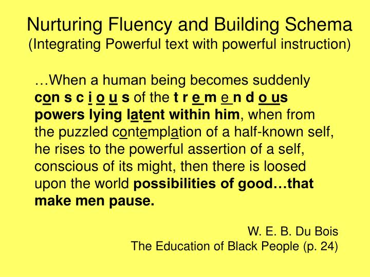 Nurturing Fluency and Building Schema