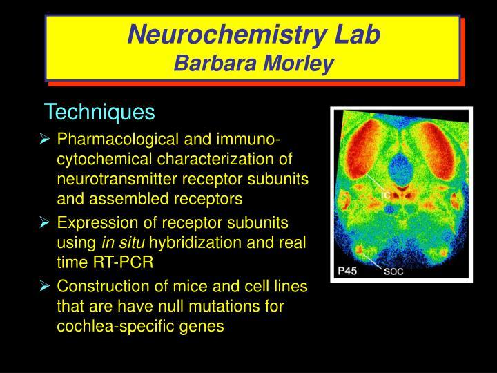 Neurochemistry Lab