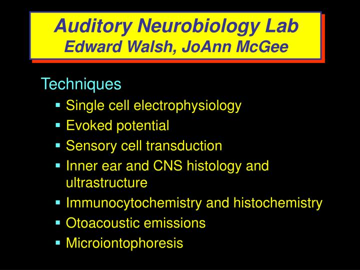 Auditory Neurobiology Lab