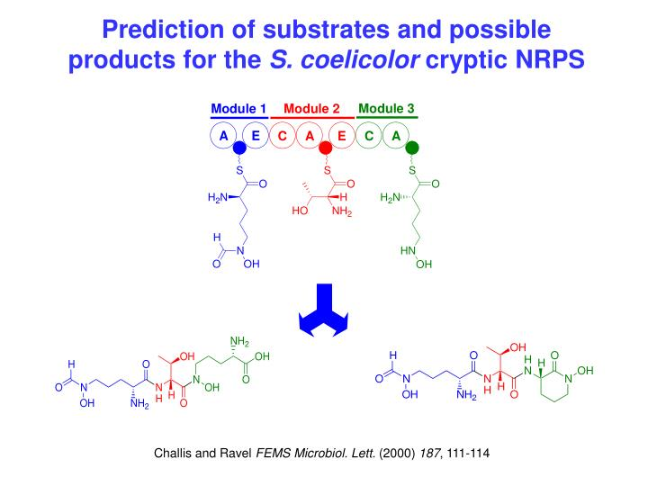 Prediction of substrates and possible  products for the