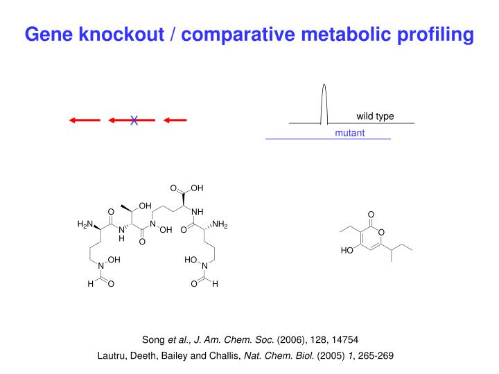 Gene knockout / comparative metabolic profiling