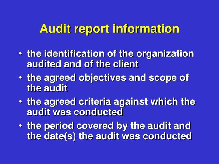 Audit report information