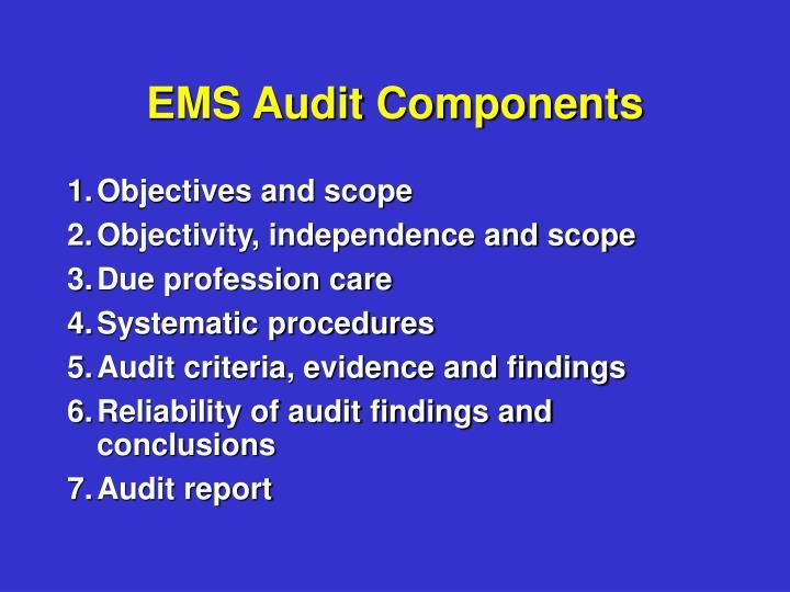 EMS Audit Components