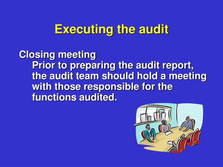 Executing the audit