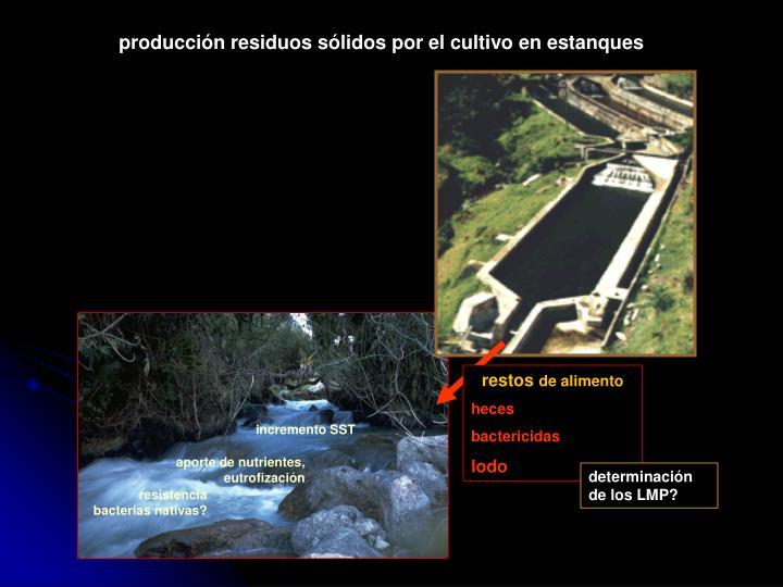 producción residuos sólidos por el cultivo en estanques