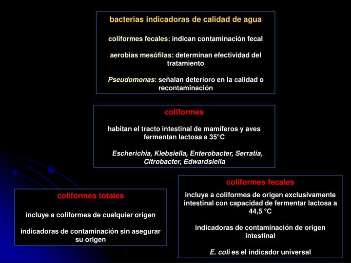 bacterias indicadoras de calidad de agua