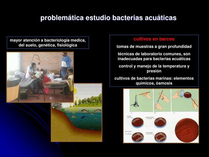 problemática estudio bacterias acuáticas