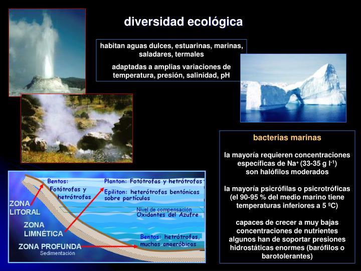 diversidad ecológica