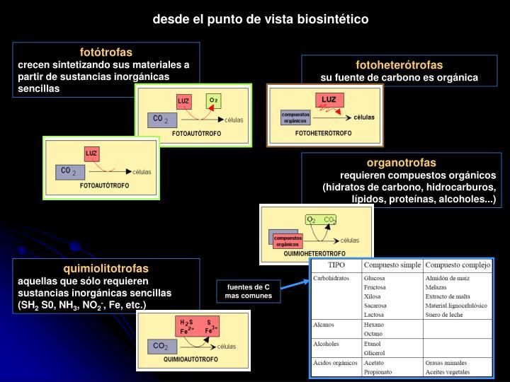 desde el punto de vista biosintético