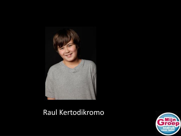 Raul Kertodikromo