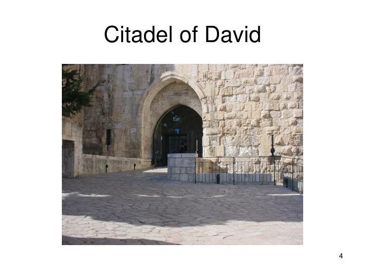 Citadel of David