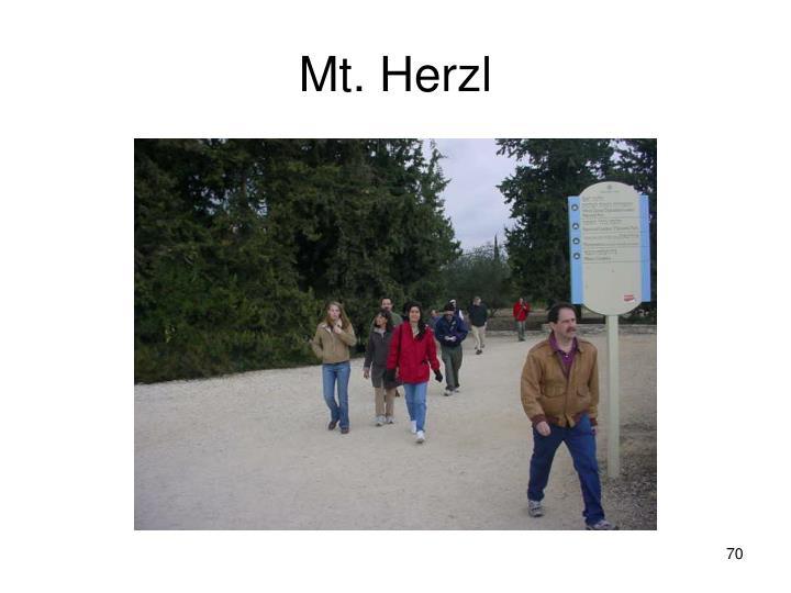 Mt. Herzl