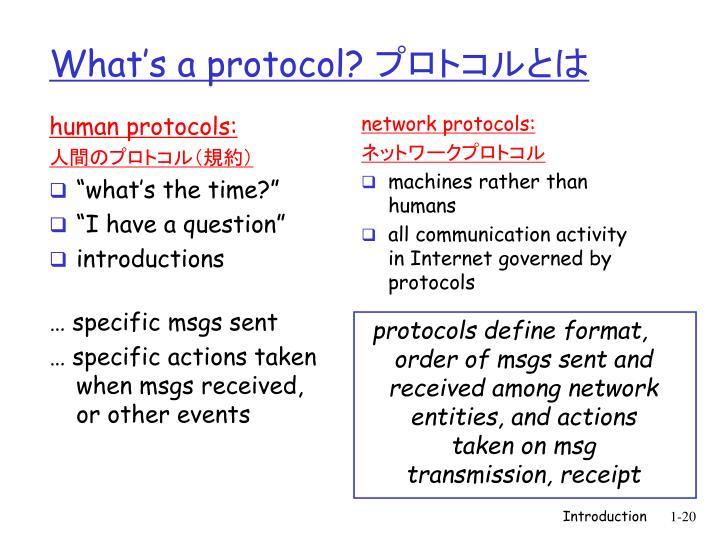 human protocols: