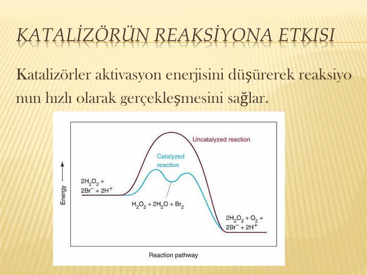 Katalizörler aktivasyon enerjisini düşürerek