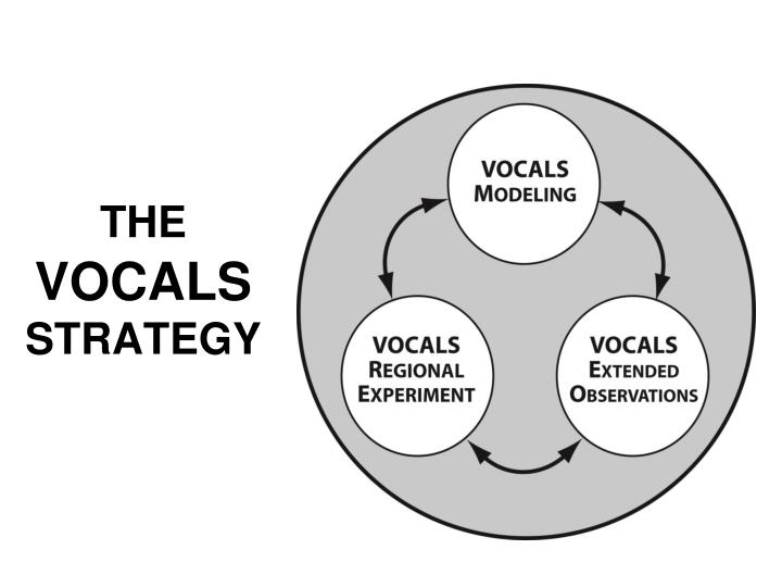 The vocals strategy