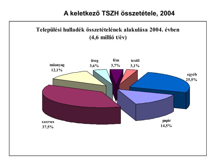 A keletkező TSZH összetétele, 2004