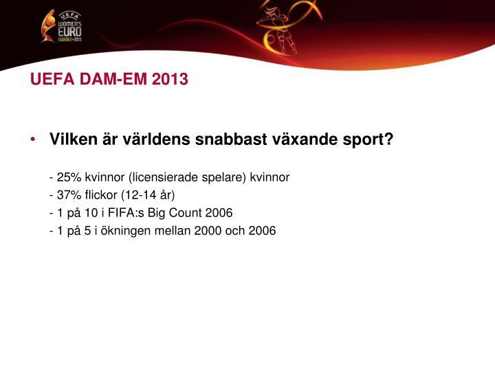 UEFA DAM-EM 2013